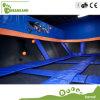 Disfrutar de su salto en parque comercial grande manufacturado Dreamland del trampolín