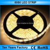 striscia impermeabile di 12V SMD 5050 LED