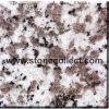 Weiße Grobkorn G439 Puning Granit-Fliese u. Platte