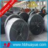 Nastro trasportatore di nylon del fabbricato di alta qualità (NN100-NN600)