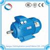 Motore elettrico a tre fasi di alta efficienza Ye3