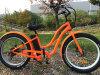 Assistée de la pédale Ebike 500/750 48V/1000W gras populaire pneus vélo électrique pour dames