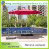 Deluxe Offect Outdoor Sun Promotionnel Rain Garden Umbrella