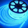 220V impermeabilizzano la corda blu dell'indicatore luminoso di striscia del LED per esterno dell'interno