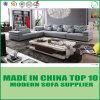 Grande sofà d'angolo del tessuto di svago domestico della mobilia