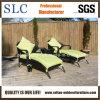 Салон Lounge/фаэтона напольный/установленный салон сада (SC-A7315)