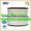 Filtre à air haute performance 6I-0273 pour Caterpillar (6I-0273)