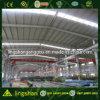 Almacén de la estructura de acero de hoja de acero del palmo grande (LS-SS-002)