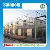 中国はガラス温室のための実生植物のネットを製造する