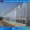 Aquaponicsのための工場価格のパソコンシートの温室