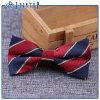 Stock chez les jeunes de vente chaude pour le prix de gros Bow Tie