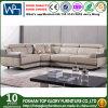 Nuovo arrivo L sofà del cuoio di figura, sofà moderno del salone (TG-S213)