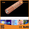 C30 Purple 365nm Flashlight Detection Fluorescence Detector Amber Scorpion Catch