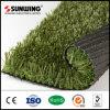 卸し売り見る自然な庭のカーペットの景色の草