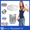 T3 de sodium de Liothyronine de perte de poids de la L-Thyroxine T4 de stéroïde anabolisant