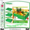 Caixa plástica dobrável do transporte da fruta e verdura