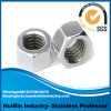 Écrous six-pans d'acier du carbone et d'acier inoxydable avec grand Wideth à travers les dispositifs de fixation plats (de noix d'adhérence de frottement)