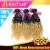 24の方法様式のブラジルのFunmiのカールのOmbreの毛の拡張