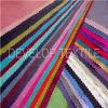 Garment (DNT2007)를 위한 230t Polyester Nylon Interwoven Chemical Fabric