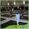Parc d'intérieur d'intérieur attrayant énorme de trempoline pour des enfants