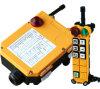 À télécommande tenu dans la main sans fil de pont roulant de F24-6D