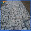 Produce professionale verde Terra esagonale tessuta Gabion Basket (Anping fabbrica)