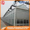 Het Groene Huis van het Glas van de multi-Spanwijdte van de landbouw met Hydrocultuur Stsyem