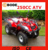 250cc ATV con il motore Mc-373 di Jianshe YAMAHA