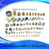 Partie d'usinage CNC Not-Standard OEM