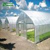 2018プラスチックフィルムカバーが付いている農業のトンネルの温室