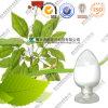 Panax van de Prijs van de fabrikant het Bulk Natuurlijke Uittreksel van de Bladeren van Ginsengen