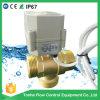 3 방법 1 1/4가지의  G Dn32 금관 악기 수직 유형 BSPP 수나사 전기 공 통제 자동화된 벨브