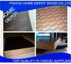 Resistente al agua de buena calidad para la construcción de madera contrachapada de películas
