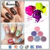 Acrylnagel-Kunst-Perlen-Pigmente