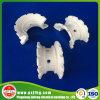 Anello eccellente di ceramica della sella di Intalox per la torre d'essiccamento