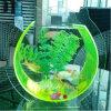 Réservoir de poissons carré acrylique blanc en gros