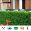 [سونوينغ] [أوف] يحمى خضراء اصطناعيّة بلاستيكيّة لبلاب ورقة حديقة سياج