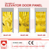 Rue Golden Door Panel de rue pour Elevator Cabin Decoration (SN-DP-397)