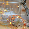 20 LEDs chaudes LED blanches Micro batterie Cordes Fairy Lights Garland
