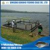 Водохозяйство HDPE квадратное плавать клетки рыб