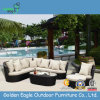 Mobilia esterna del rattan - sofà del Poolside impostato (S0041)