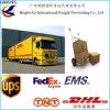 COM espressa internazionale DHL di WWW invia il trasporto in tutto il mondo espresso di Paket