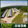 Edificio agrícola prefabricado de pollo de la estructura de acero
