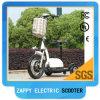 Scooter électrique électrique 500watt de trois roues