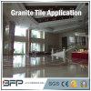 Het Materiële Natuurlijke Graniet van het project/Lei/Marmeren Tegel voor het Binnenland van de Muur van de Vloer