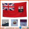Хорошее качество дешевые быстрая поставка национального флага