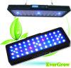 LED perfecto de larga duración de la Luz de acuario para peces