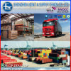 Gaborone 보츠와나에 바다 Freight 또는 Logistics/Shipping/Sea Shipment/Sea Cargo 중국