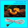 Plug européen Reptile Heating Cable pour Market européen
