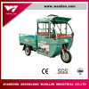 Tricycle électrique de cargaison de cabine de gestionnaire de 3 roues